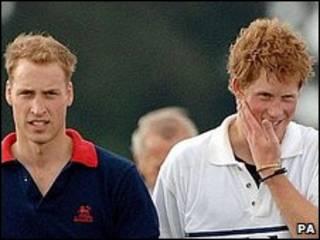 英国威廉(左)与哈里王子