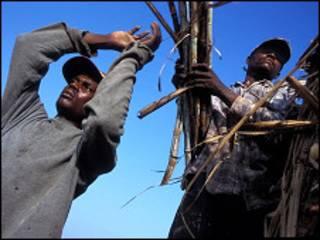 Foto de la organización Batey Relief Alliance