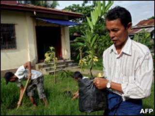 В Рангуне сажают деревья