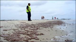 Нефть на побережье Мексиканского залива