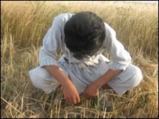 افغان يتيم