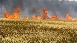 रूस में आग ने फसलों को नुक़सान पहुँचाया