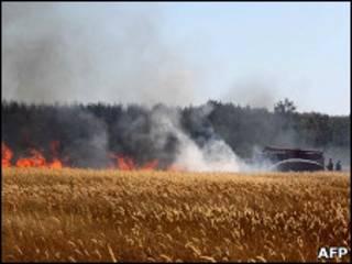 آتش سازی مزارع در روسیه