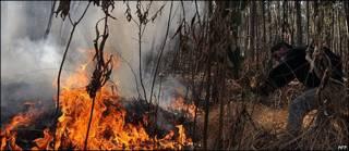 Un hombre intenta apagar el fuego en el Parque Nacional Tunari, en Cochabamba