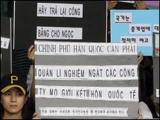 Biểu ngữ bảo vệ cô dâu Việt Nam