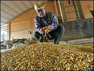 अर्जेंटीना के किसान