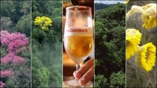 Imágenes de biodiversidad y de cerveza Águila en Colombia