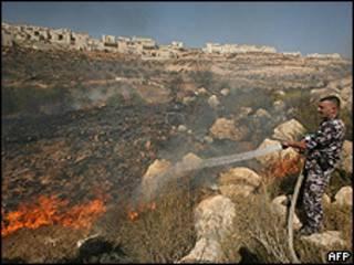 Bombeiro palestino apaga incêndio em olival perto de assentamento