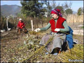Женщины работают в украинском селе Иза