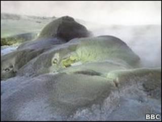 Região com piscinas geotérmicas na Nova Zelândia
