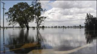 Лише минулого місяця штат Квінсленд вразили спустошливі повені