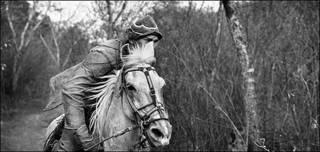 Vaqueros de las Américas © Luis Fabini