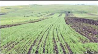 Земля в Україні не продається