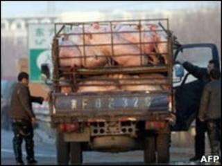 Грузовик на дороге в Китае