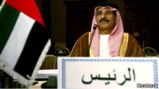 وزير النفط الإماراتي