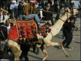 開羅示威對立派別發生激烈衝突