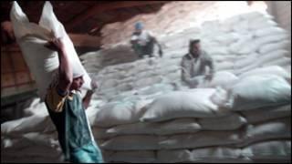 العراق من اكثر بلدان العالم استيرادا للقمح والارز