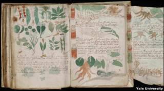 Manuscrito Voynich (Foto: Beinecke Rare book and Manuscript LIbrary, Yale University
