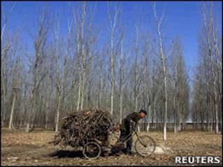 Camponês na China