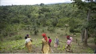 أوغندا