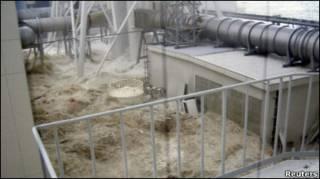 Фото миті, коли Фукусіму вразило цунамі