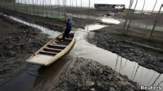 湖北省洪湖水位下降部分地區幹涸(5月20日)