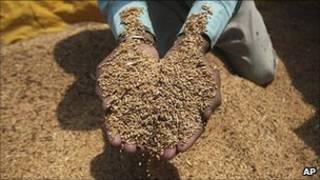樂施會報告預測說,到2030年,世界主要糧食的平均價格將上漲120%至180%。