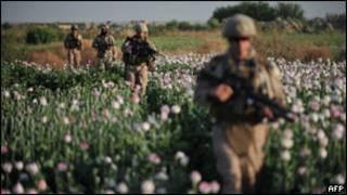 المخدرات في أفغانستان