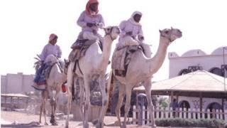 من أهالي سيناء