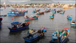 Tàu cá Việt Nam