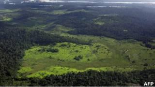 Área desmatada no Xingu em 2005 (Foto: AFP)