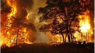 آتشسوزی طبیعی در تگزاس