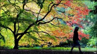 格劳斯特郡秋天的五彩缤纷