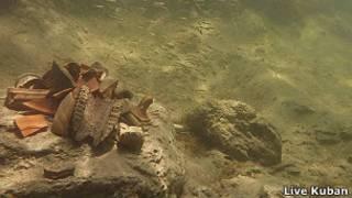 Амфоры на месте подводного раскопа в Тамани
