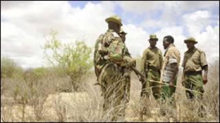 Vikosi vya Kenya