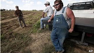 Trabajadores de una plantación de Alabama.