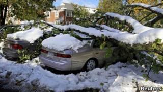Árvore cai sobre carros em Worcester, Massachusetts. Foto: Reuters