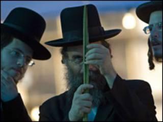 سخت دریځي یهود