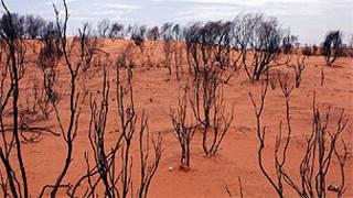 Deserto na área central da Austrália, perto de Alice Springs (Arquivo/BBC)