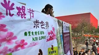 Tổ chức đám cưới tại Trung Quốc vào ngày Siêu độc thân