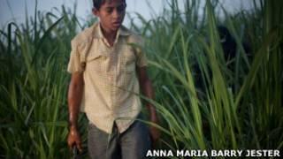 Menino trabalhando em plantação de cana na Nicarágua