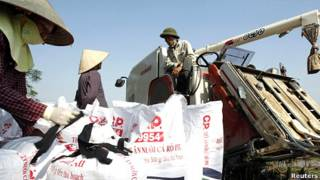 Nông dân cho gạo vào bao ở ngoại thành Hà Nội hôm 10/11/2011