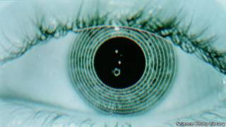 Gambar komputer dari mata yang dipindai.