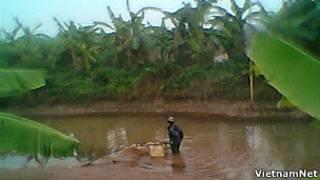 Hình ảnh người lạ đánh cá trong đầm nhà ông Vươn trên trang VietnamNet