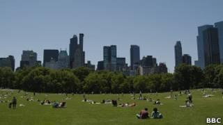 Central Park - Foto: BBC