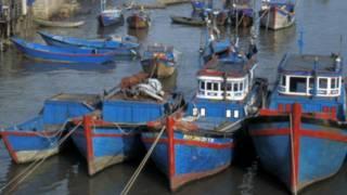 Tàu cá miền Trung Việt Nam - hình tư liệu