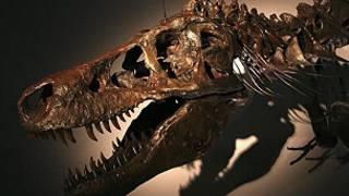 Esqueleto de tiranossauro (Getty Images)