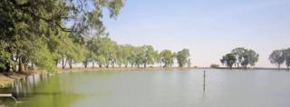 بحيرة جولو