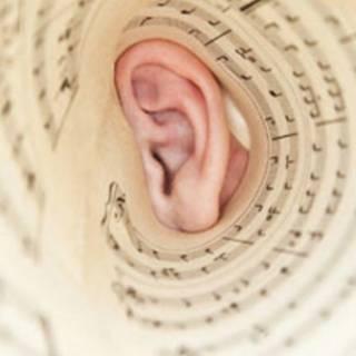 Ouvido e partitura