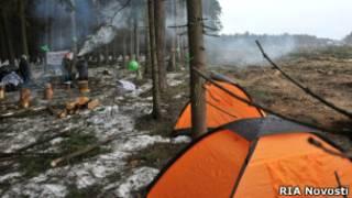 Защитники Цаговского леса